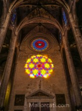 Catedral de Palma m